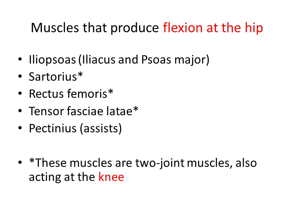 Muscles that produce flexion at the hip