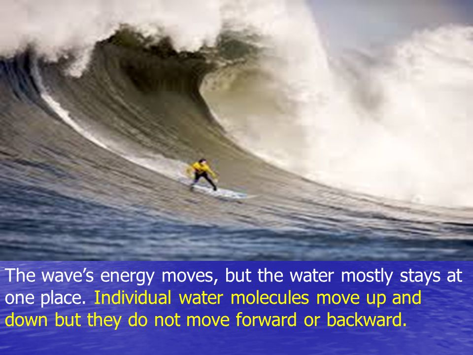 The wave's energy moves, but the water mostly stays at one place