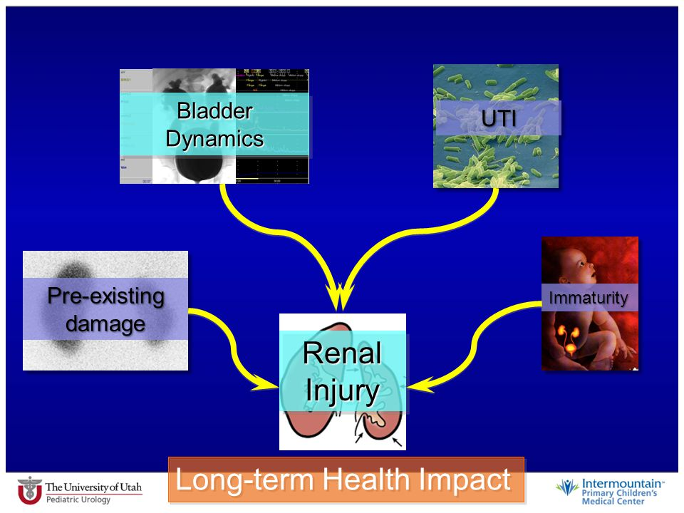 Long-term Health Impact