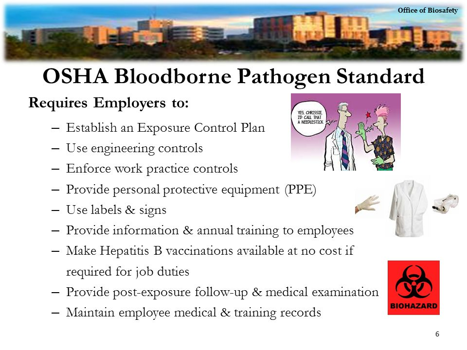 Healthcare employee safety circuit diagram maker for Bloodborne pathogens policy template