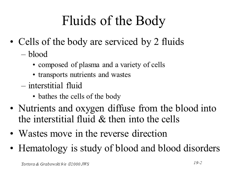 Ausgezeichnet Anatomy And Physiology Chapter 19 Blood Test Fotos ...