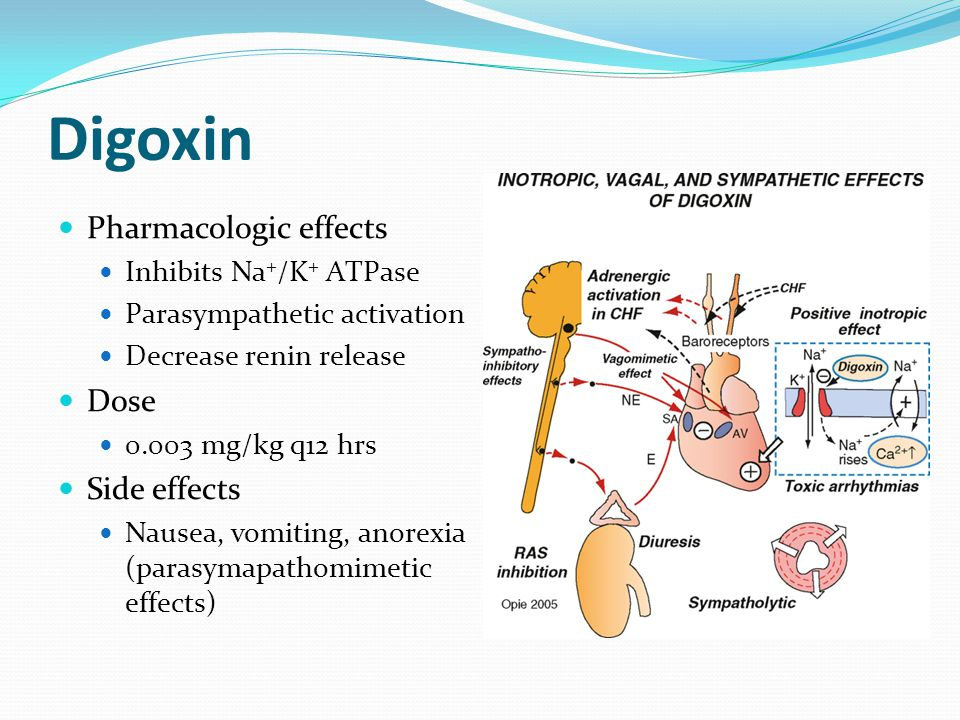 Digoxin side effects – Blog about body and health