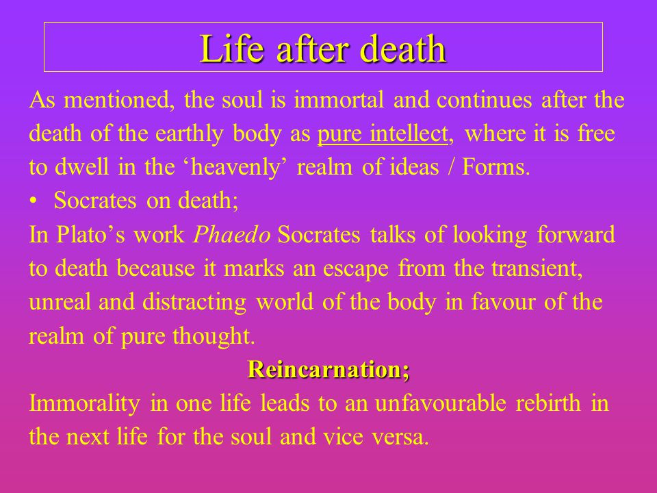 socrates on the body and soul Plato and socrates also accepted the immortality of the soul, while aristotle considered only part of the soul, the noûs, or intellect, to have that quality epicurus believed that both body and soul ended at death.