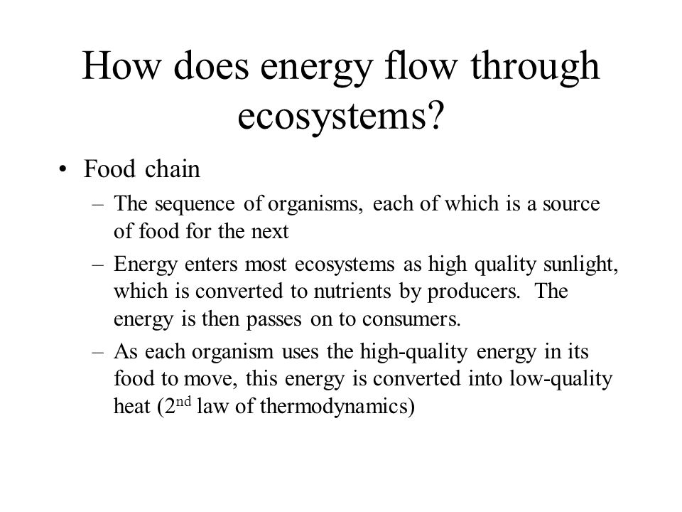 How does energy flow through ecosystems