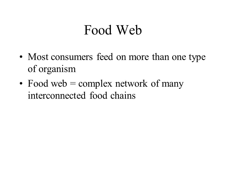 Food Web Most consumers feed on more than one type of organism