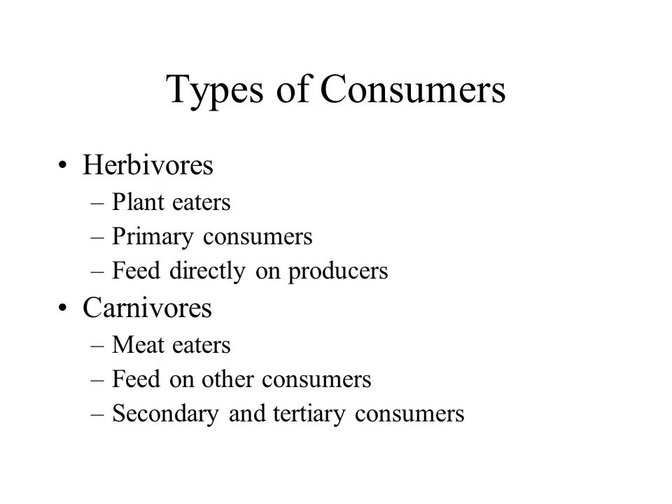 Types of Consumers Herbivores Carnivores Plant eaters