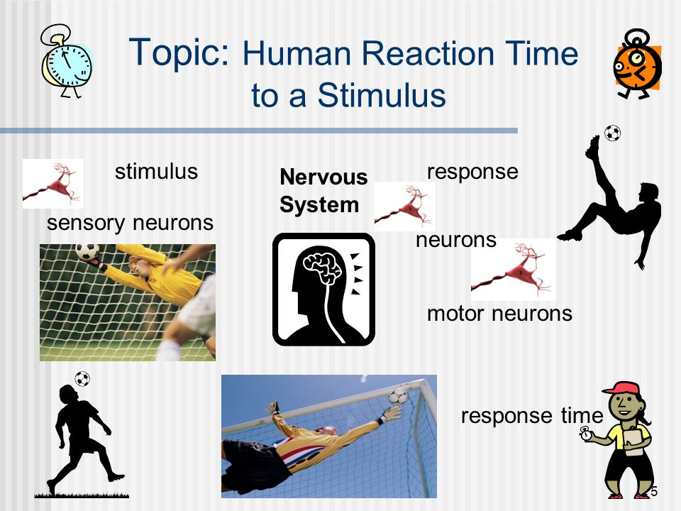 Topic: Human Reaction Time to a Stimulus