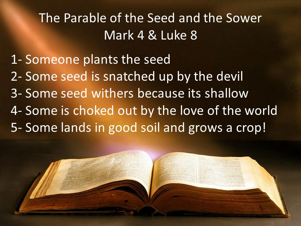 The Parable of the Seed and the Sower