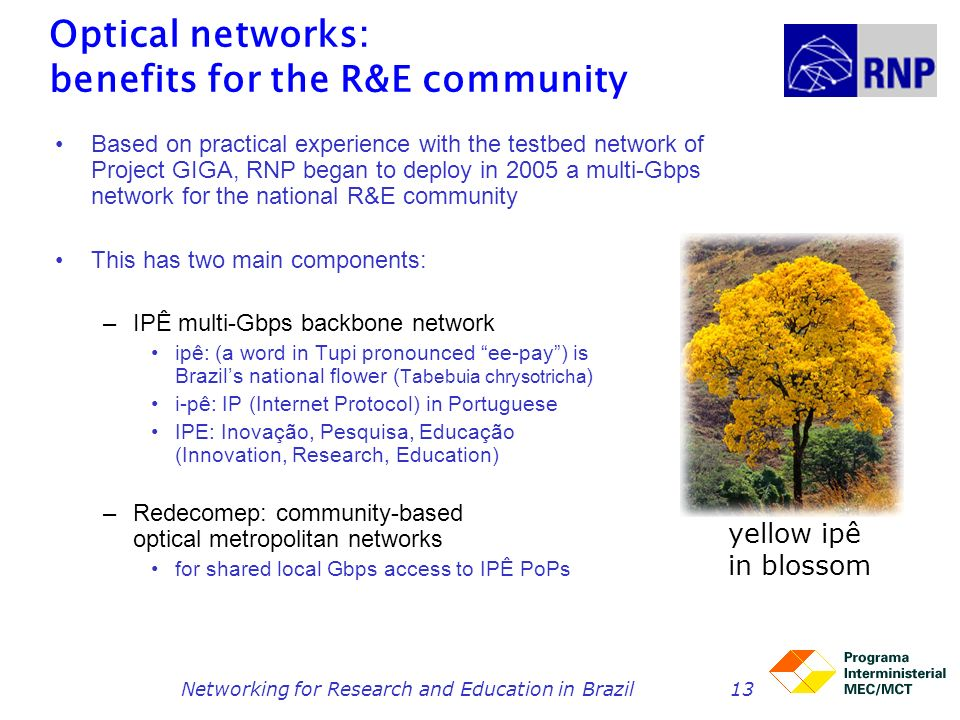 Optical networks: benefits for the R&E community
