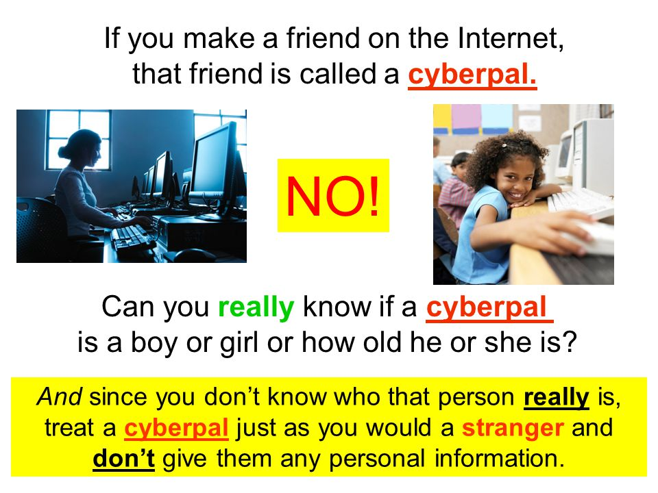 If you make a friend on the Internet, that friend is called a cyberpal.
