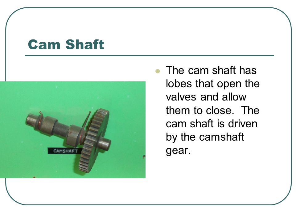 Cam Shaft The cam shaft has lobes that open the valves and allow them to close.