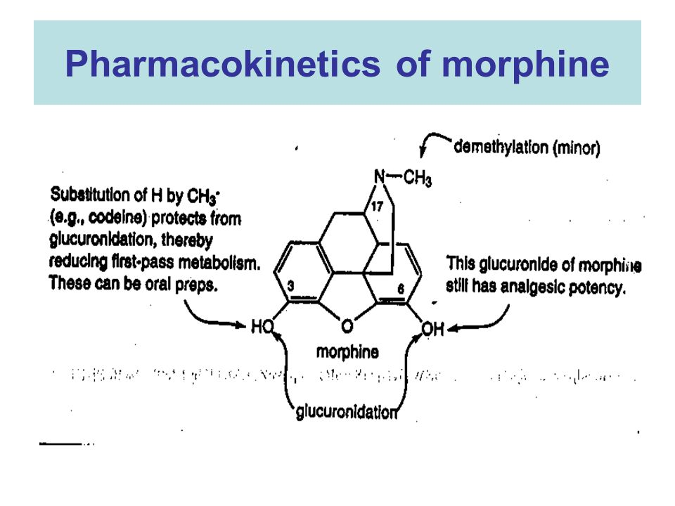 morphine pharmacokinetics and pharmacodynamics pdf