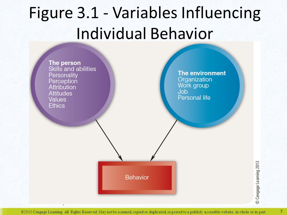 factors influencing perception in organizational behaviour pdf