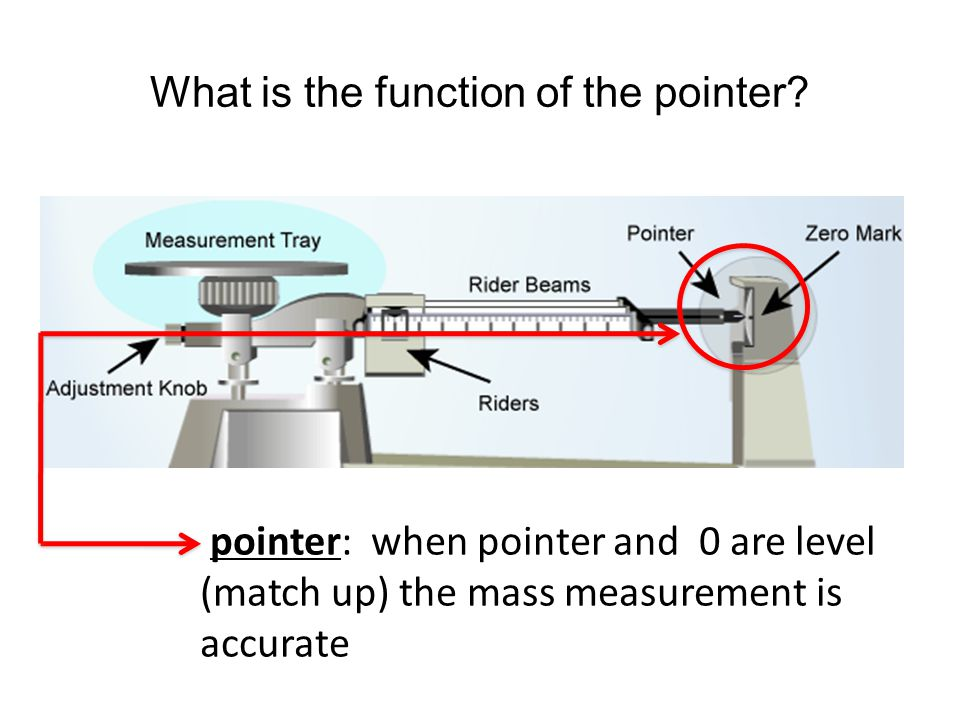 What is the function of the pointer