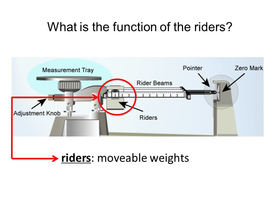 What is the function of the riders