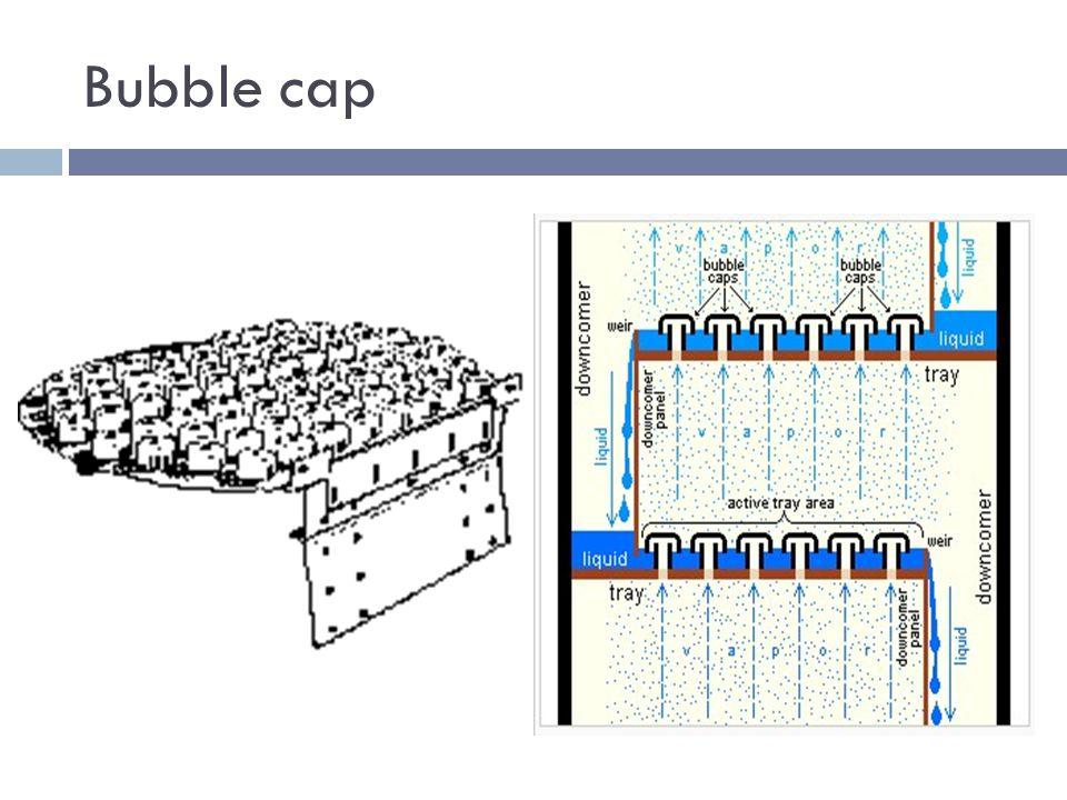 Bubble+cap internals ppt video online download