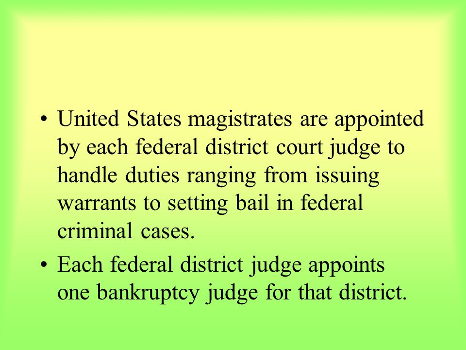 United States magistrates are appointed by each federal district court judge to handle duties ranging from issuing warrants to setting bail in federal criminal cases.