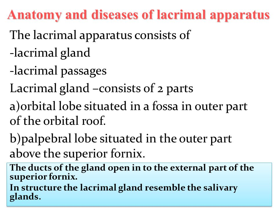 Anatomy and diseases of lacrimal apparatus - ppt video online download