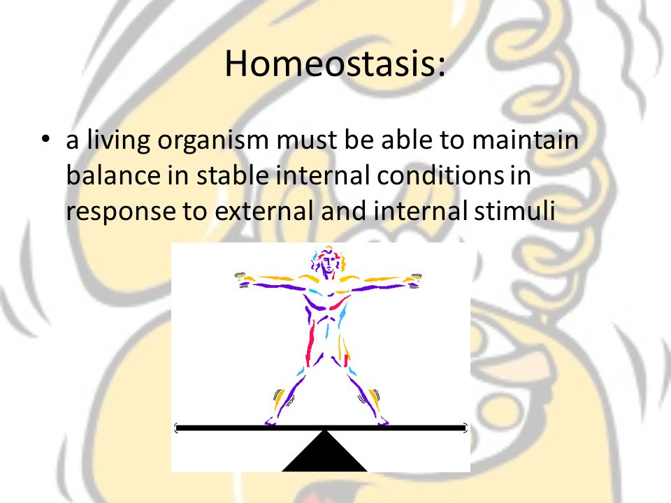 Homeostasis: a living organism must be able to maintain balance in stable internal conditions in response to external and internal stimuli.