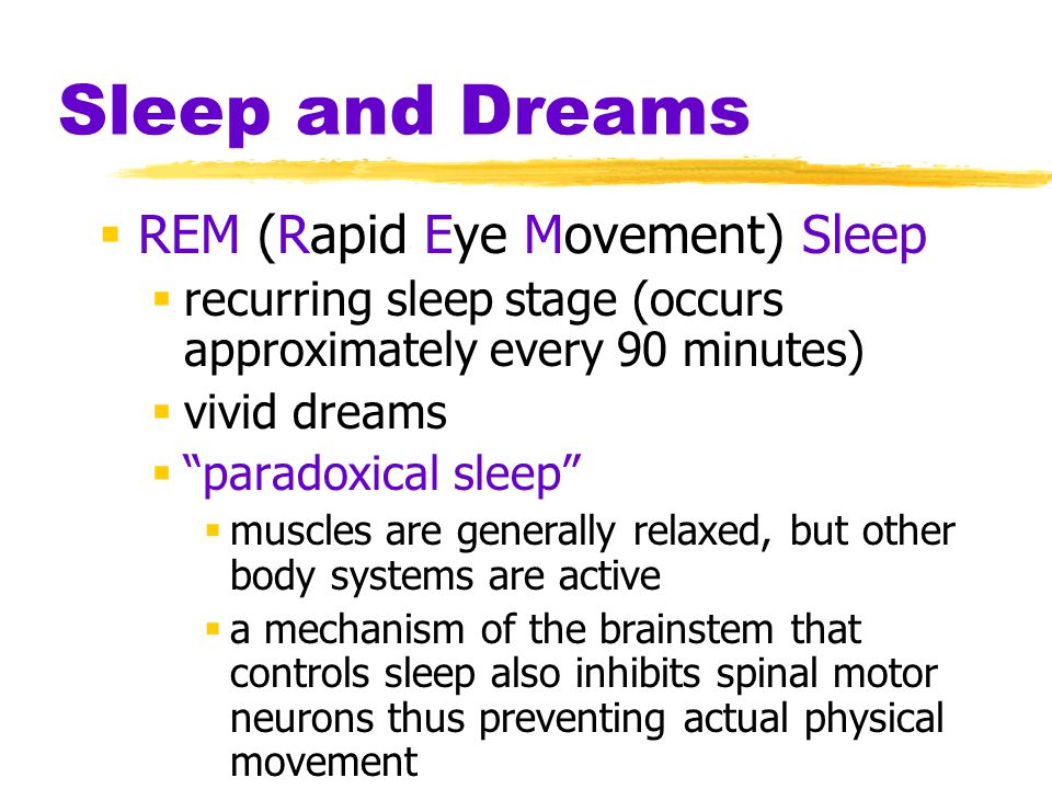 sleep and rapid eye movement Rapid eye movement sleep, sleep continuity and slow wave sleep as  predictors of cognition, mood, and subjective sleep quality in healthy men and  women.
