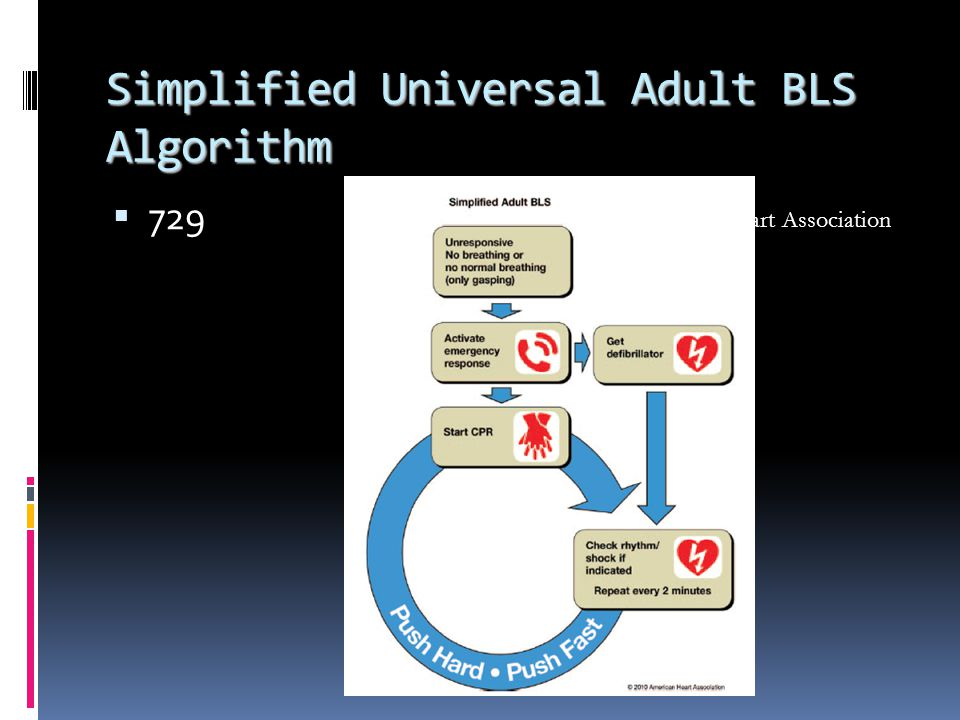 Simplified Universal Adult BLS Algorithm