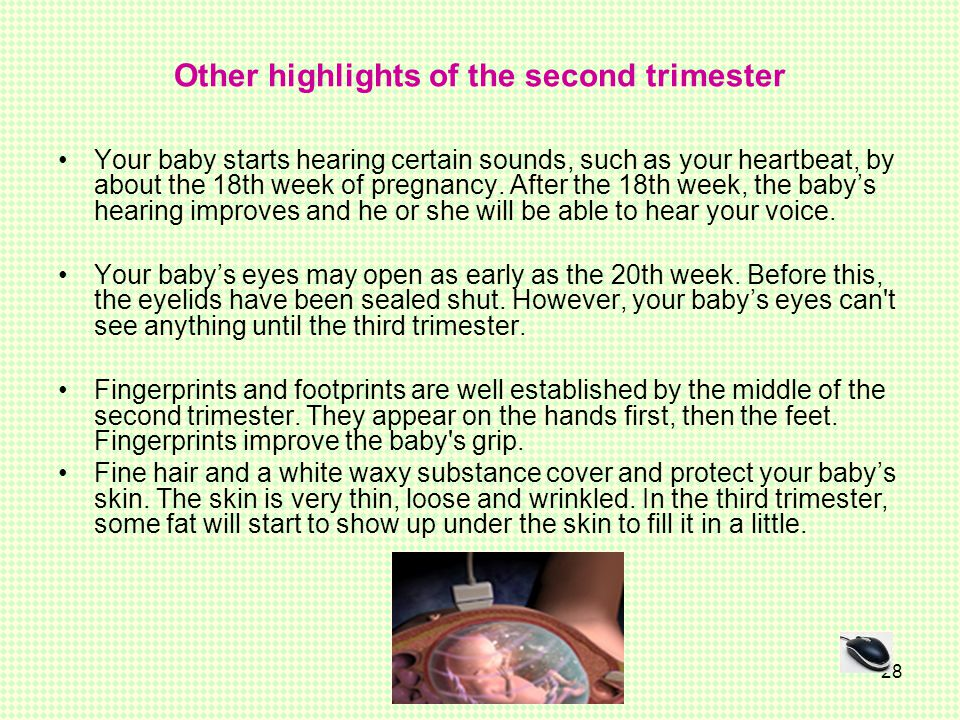 Other highlights of the second trimester