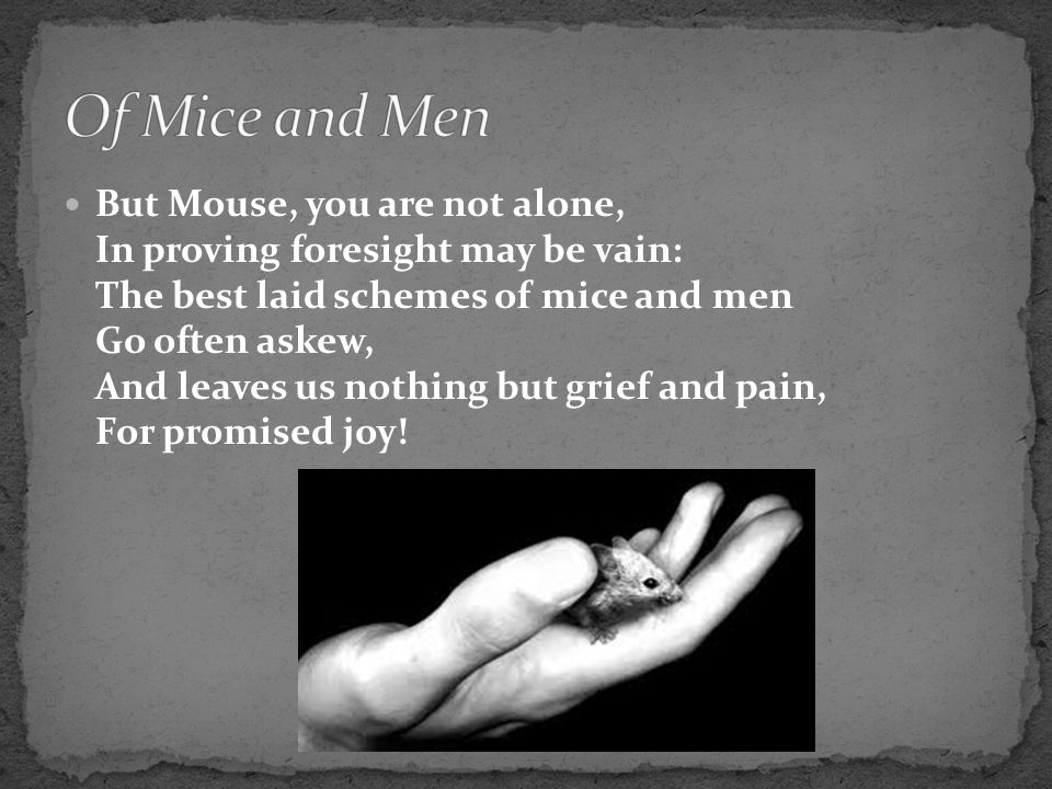 the best laid plans of mice and men quote