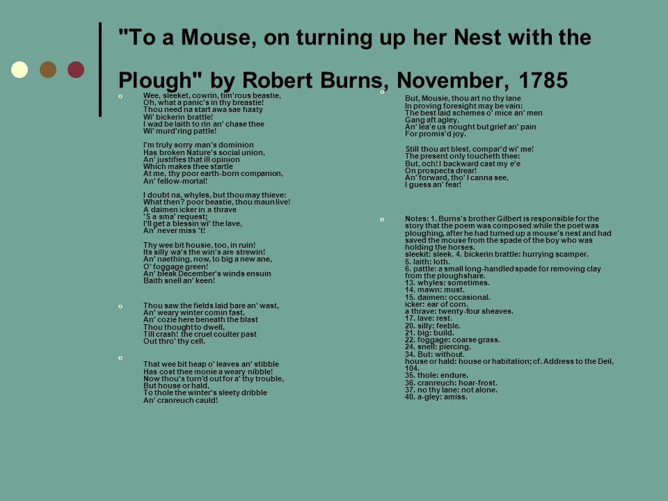 To a Mouse, on turning up her Nest with the Plough by Robert Burns, November, 1785
