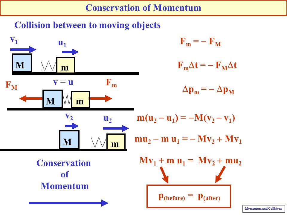 Momentum and Collisions - ppt video online download