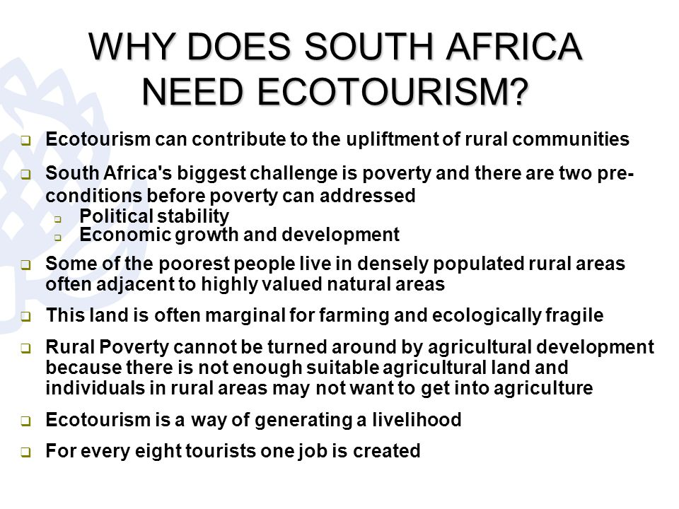 discussion the economic importance of tourism in south africa Check out our top free essays on economic importance of tourism in south africa to help  south africa infrastructure industry infrastructure and impact on the economy of south africa.