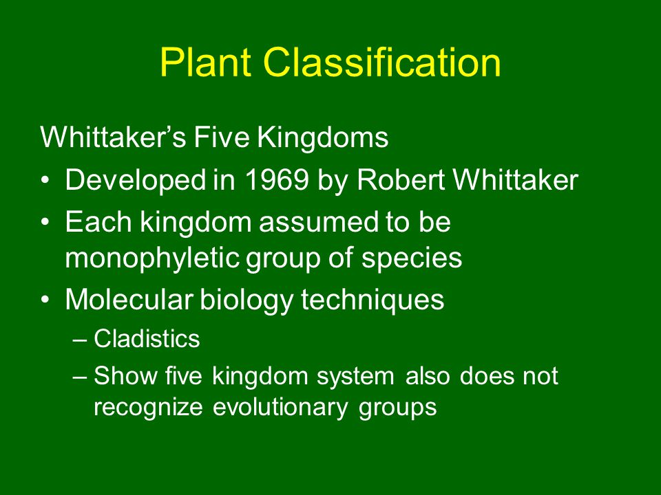 Plant Classification Whittaker's Five Kingdoms