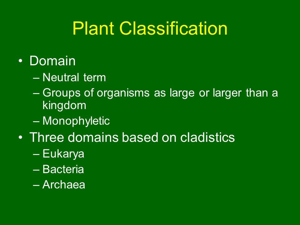 Plant Classification Domain Three domains based on cladistics