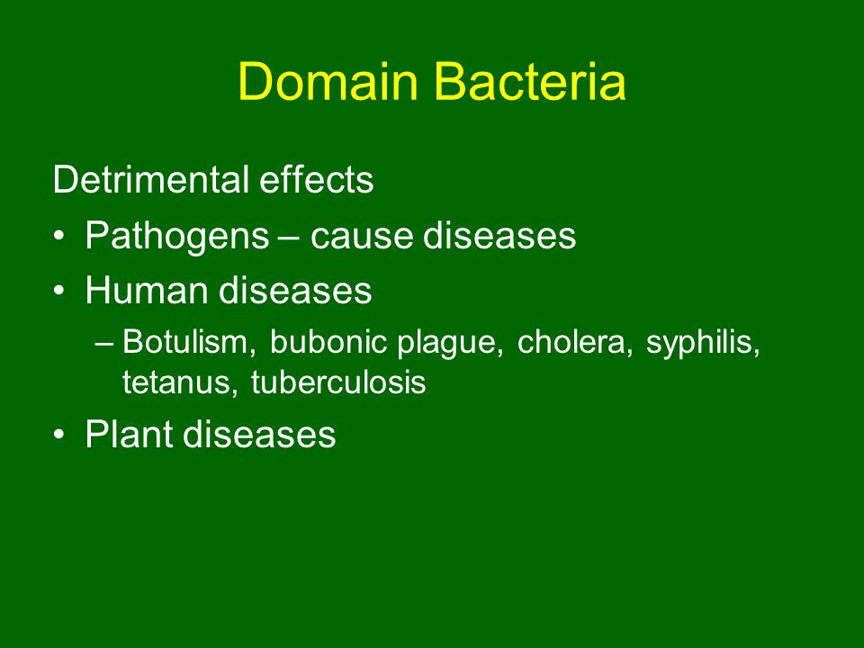 Domain Bacteria Detrimental effects Pathogens – cause diseases