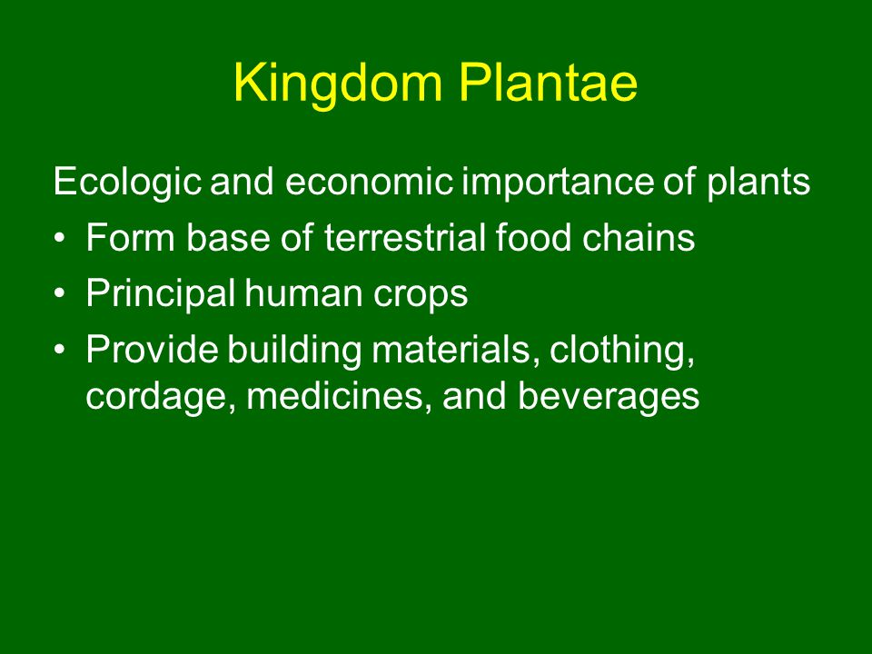 Kingdom Plantae Ecologic and economic importance of plants