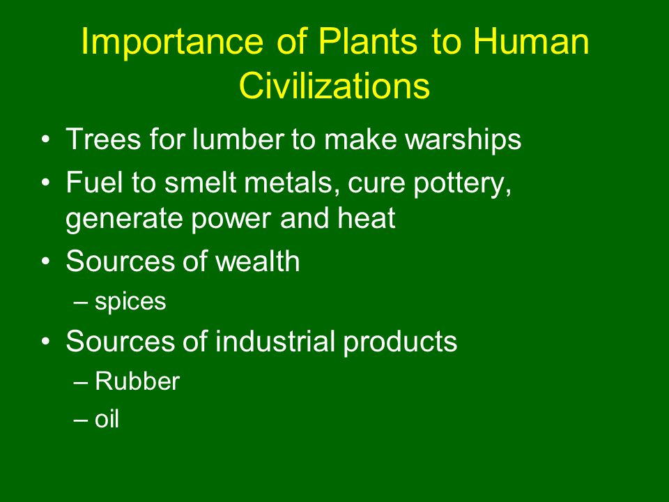Importance of Plants to Human Civilizations