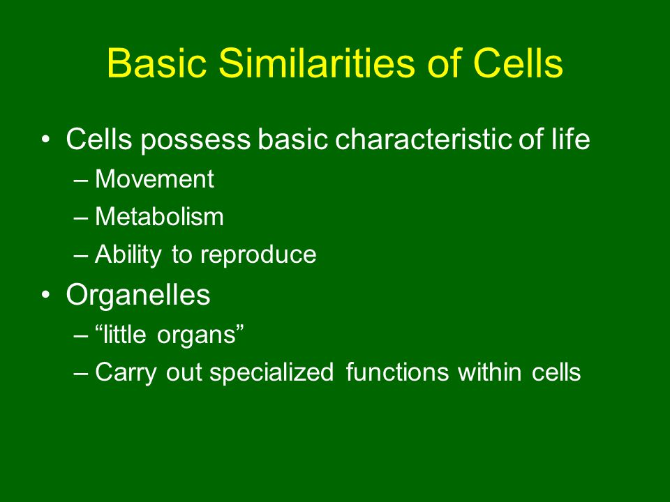 Basic Similarities of Cells