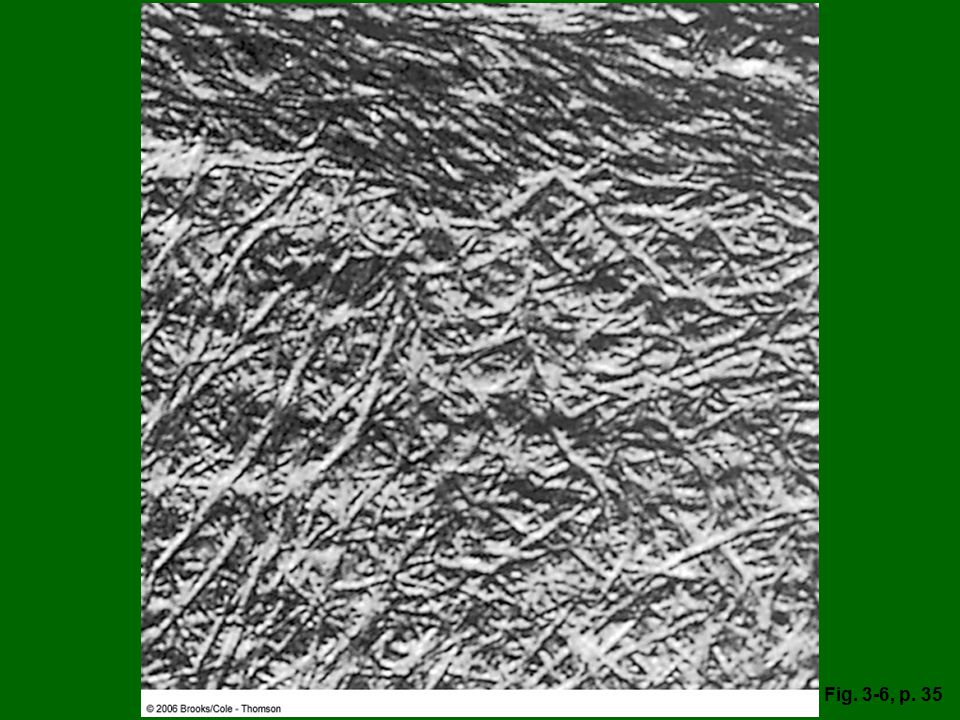 Figure 3.6: A small section of cell wall, as seen in a transmission electron microscope. The filaments are cellulose.