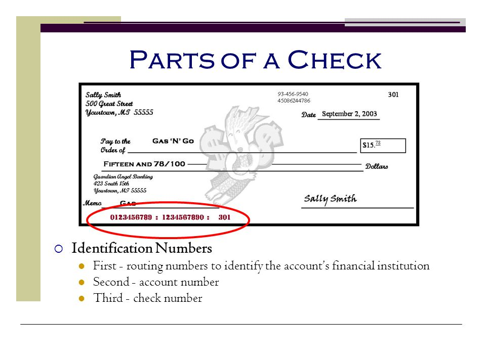 Parts of a Check Identification Numbers