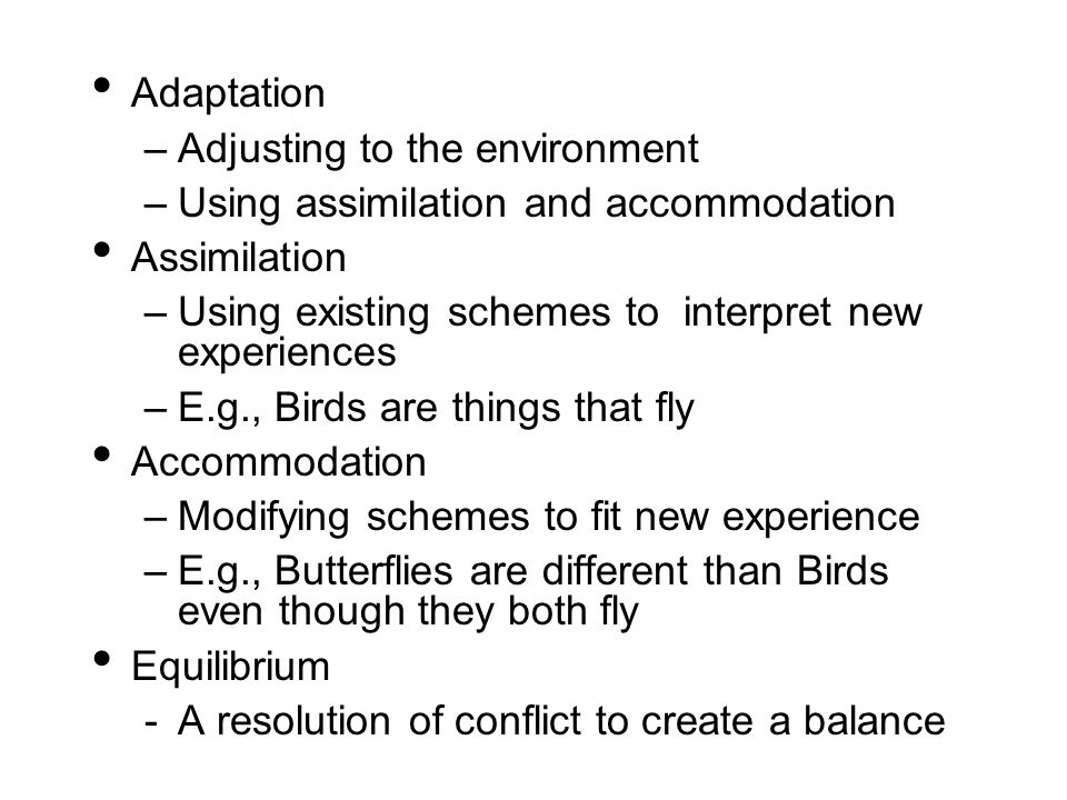 Adaptation Adjusting to the environment. Using assimilation and accommodation. Assimilation. Using existing schemes to interpret new experiences.