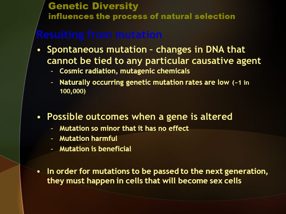 How Does Mutation Influence Natural Selection