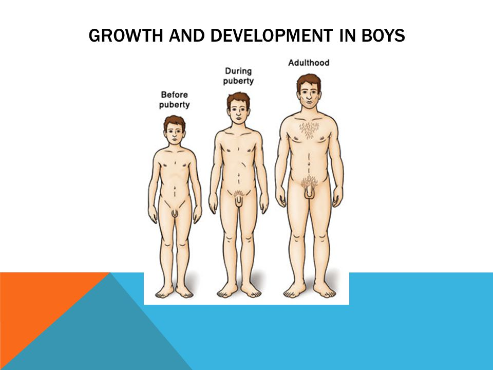 Growth and Development in boys