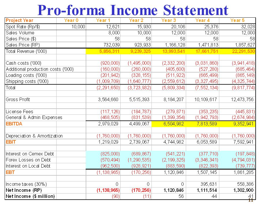 Pro Forma Income Statement Capstone Project