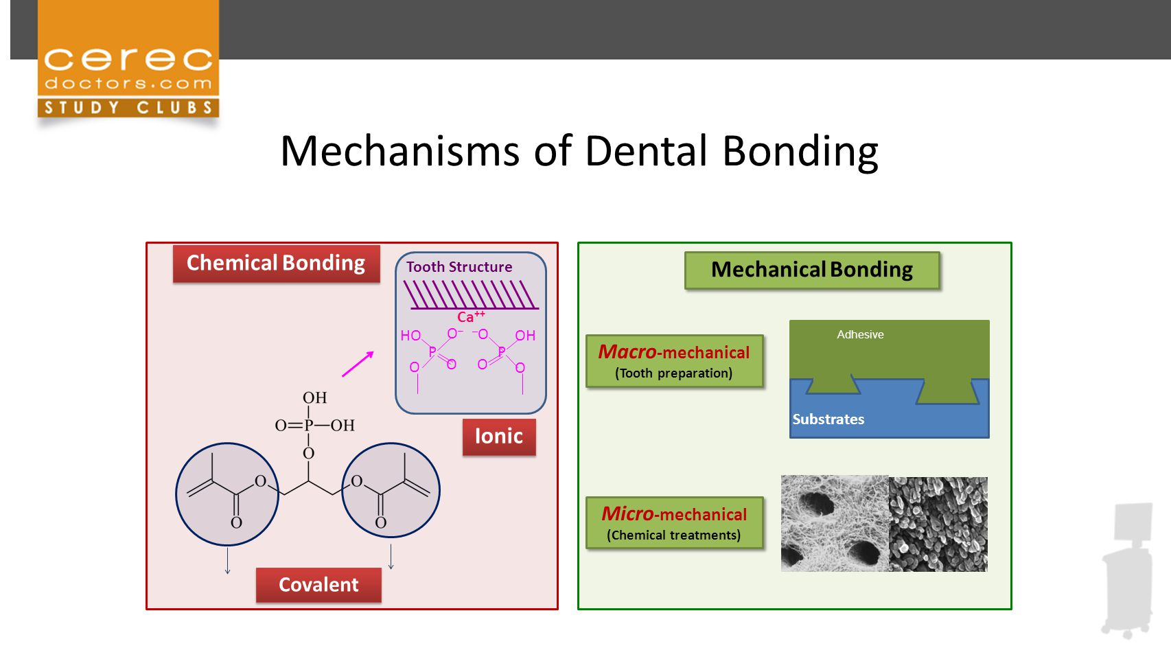 development of dental bonding agent Optibond™ dental bonding agents include the convenience of a universal bonding agent, the ease of an all-in-one and the reliability of a tried and true approach each of our dental bonding agents provides the security and confidence you require as a professional with ease of use and essential patient comfort.