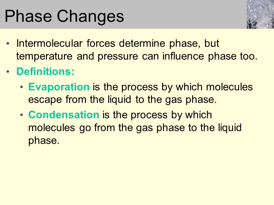 vapor pressure and intermolecular forces relationship tips