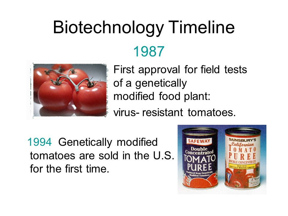 biotechnology and genetically modified foods Free essay: biotechnology and genetically modified foods are genetically modified foods safe genetically modified foods are crop plants created for human or.