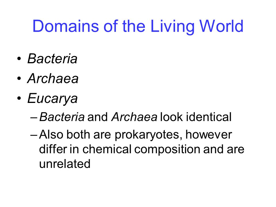 Domains of the Living World