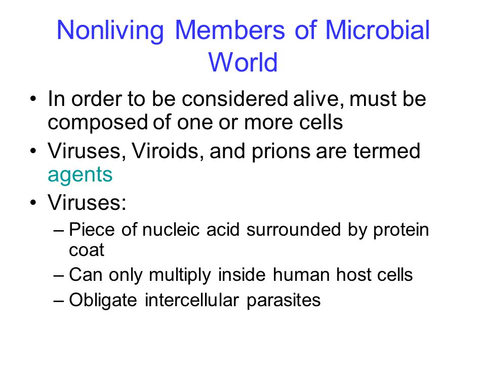 Nonliving Members of Microbial World