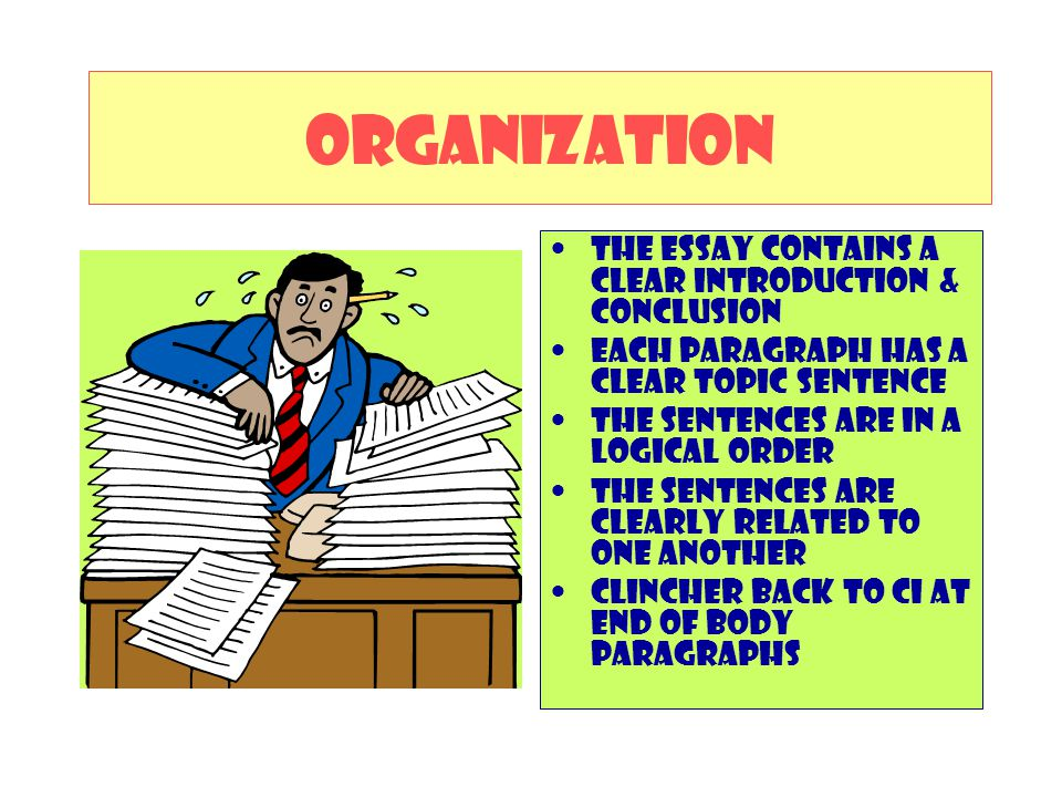 ORGANIZATION The essay contains a clear introduction & Conclusion