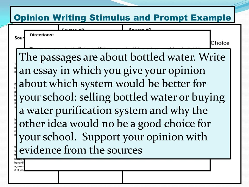 opinion writing sample