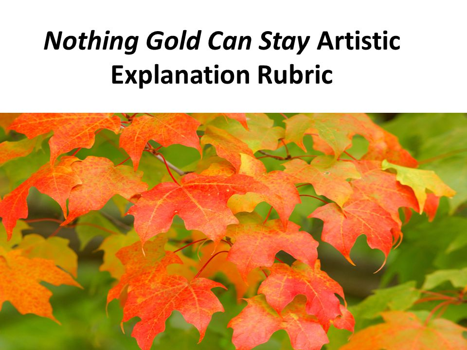 Descriptive nothing can stay gold essay